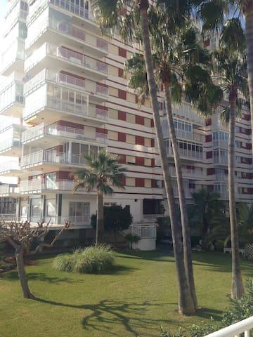 Benicasiando con Wifi - Benicasim - Apartmen