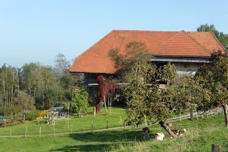 B&B Zum Hinkelstein mitten in Natur - Guggisberg