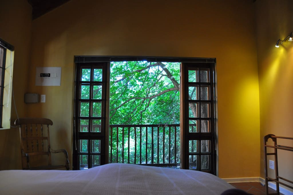 Tranquil bedroom view into the lush garden.