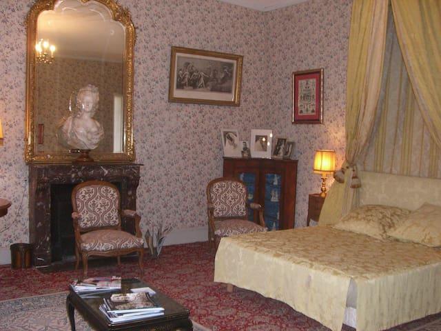 Belle chambre, lit à baldaquin, château du XIVeme. - Saint-Gaultier - Apartment