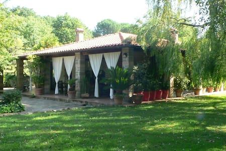 Villa with swimming pool - Manziana