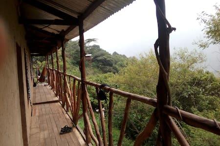 Monkey House Lodge