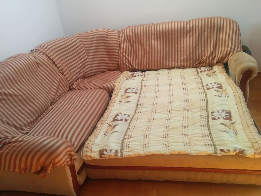 this is an extra sofa on which the guests will sleep on