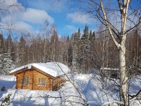 Финский дом в Чайко. (Первомайское-Огоньки )