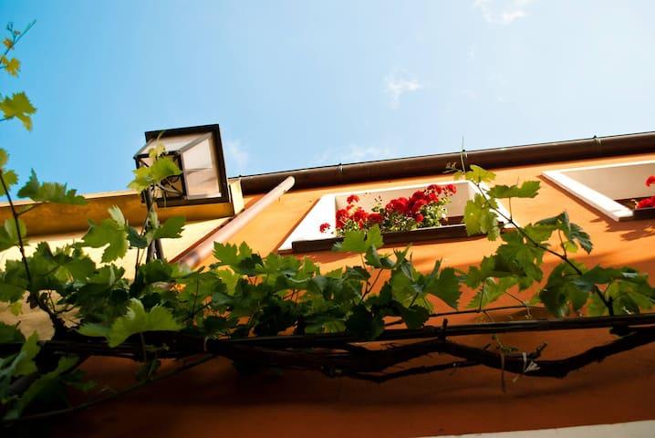 I gerani rossi, your B&B in West Sardinia! - Paulilatino
