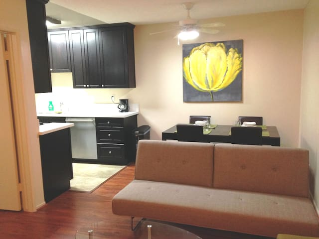 Renovated Downtown Apt W Parking Apartments For Rent