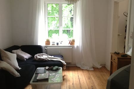 Cosy flat with wooden floors in the heart of Schanzenviertel. Very quit location in a green courtyard. Flat is fully equipped and decorated with individual style.
