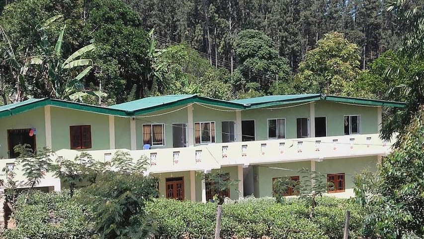 Narra home stay inn