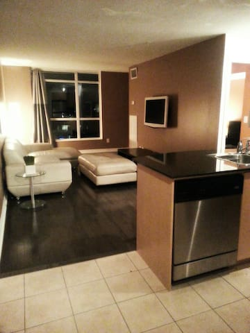 Luxury Downtown Waterfront Condo
