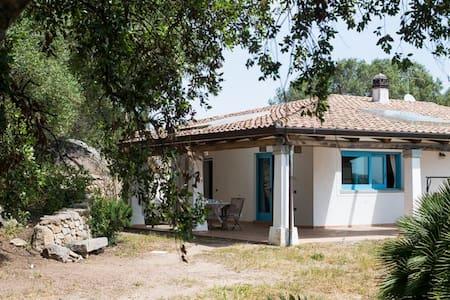 Casa spaziosa con ampio giardino - Santa Teresa di Gallura - วิลล่า