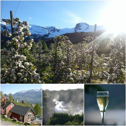 """River Garden Cabin""  - cool basecamp in Hardanger"