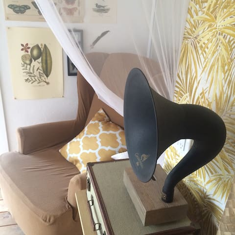 Let this gramophone  get you in the mood; amplify your iPhone speakers... no electricity required