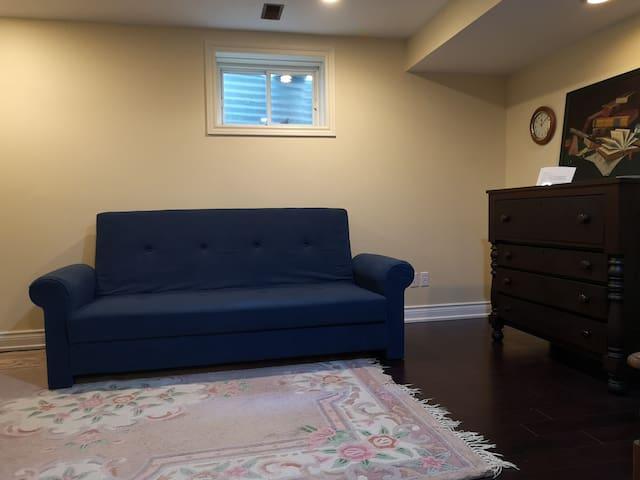 Basement living /reading room