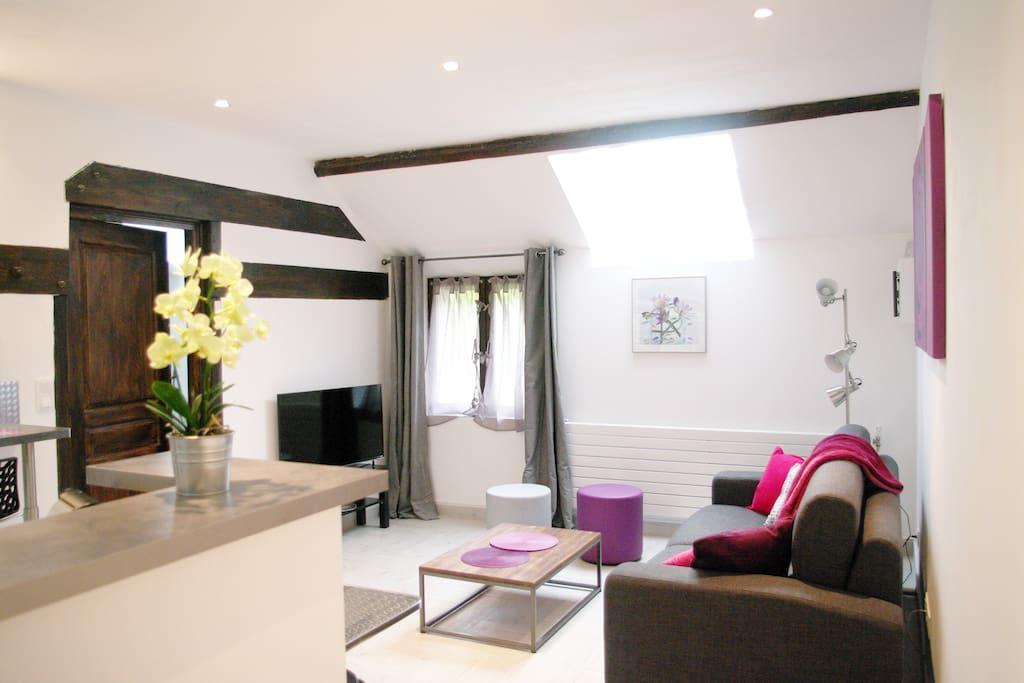 escale bel air suite orchid e fontenay l s briis le de france. Black Bedroom Furniture Sets. Home Design Ideas