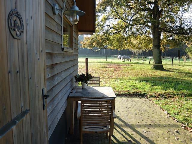 Knus compleet huisje in bos privacy - Giethmen