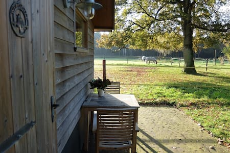 Knus compleet huisje in bos privacy - Cottage