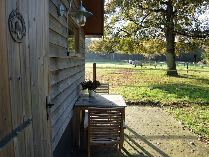 Knus compleet huisje in bos privacy