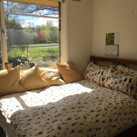 Sunny room in leafy Ainslie - Ainslie - Casa