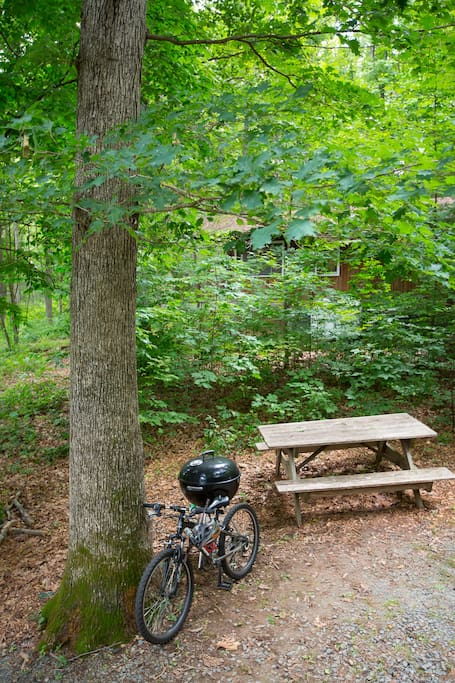 Park your bike right next to your comrfortable cottage in the woods!
