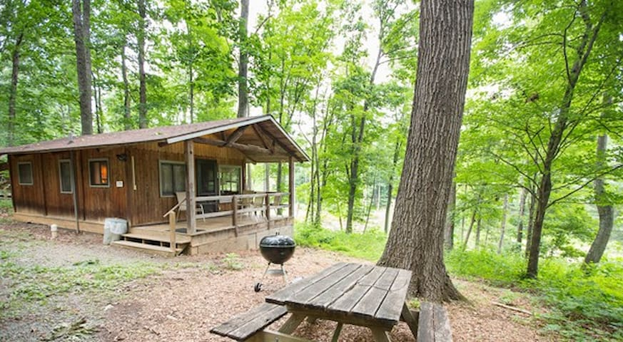 Romantic Mt Cabin, Lake, Fishing #6 - Crozet - Chalet