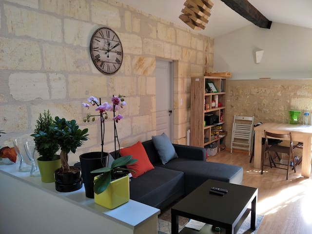 Cosy appartement in the center of Saint Emilion