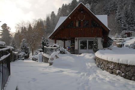 Gîte chaleureux en Alsace - Soultzeren