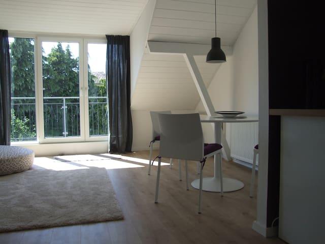 Dachgeschoss Wohnung mit Balkon - Bad Salzuflen - Pis