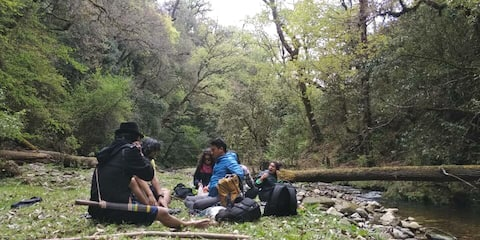 Traveller's Space in Shergaon, Arunachal Pradesh