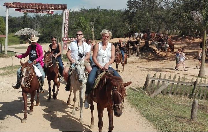 Los turistas paseando a caballo