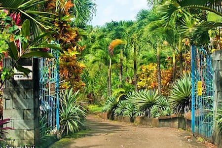Garden View Unit [free parking] - Marigot - Casa