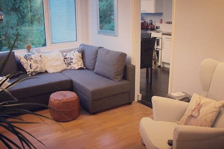 Cosy flat in Windsor town centre - Windsor - Apartment