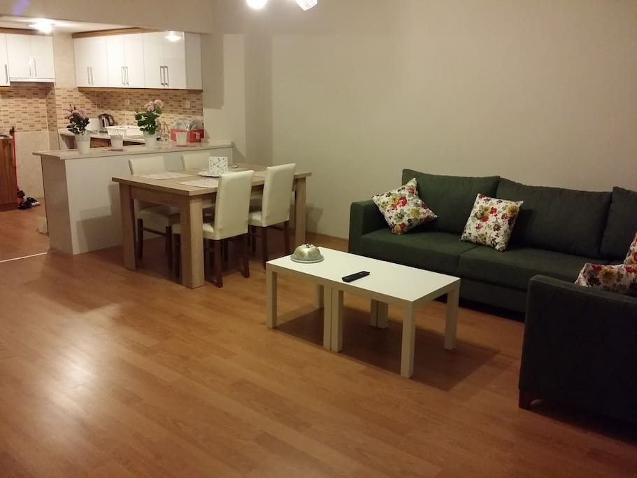 New style with open Kitchen.