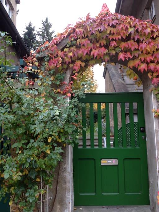 grünes Eingangstor von der Strasse aus