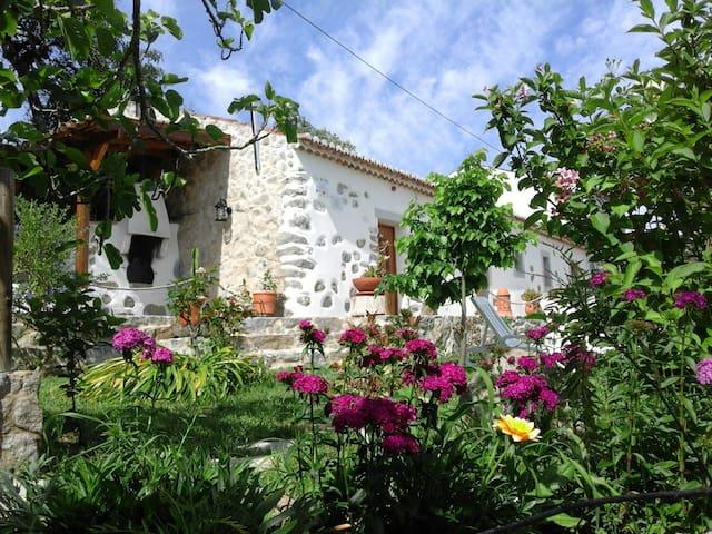 Rural tourism - Villa - Nave - Villa