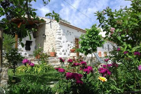 Rural tourism - Villa