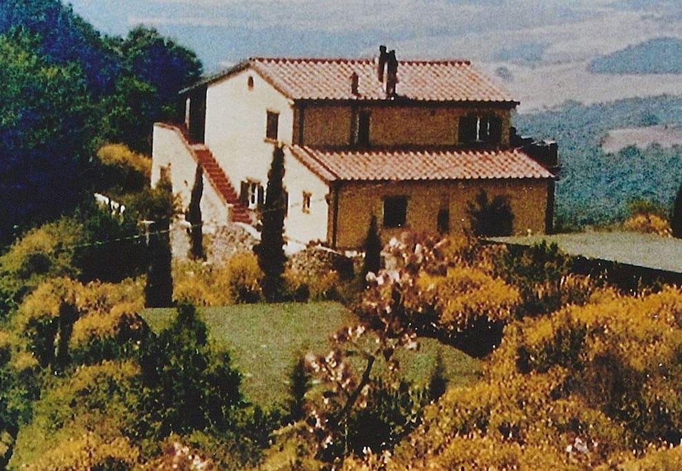 """Die Wohnung """"Papavero"""" befindet sich im Erdgeschoss des Hauses"""