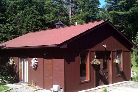 Hiker/Skier's Dream Cabin! - Kerhonkson