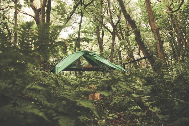 Tree Tents & Wild Camping