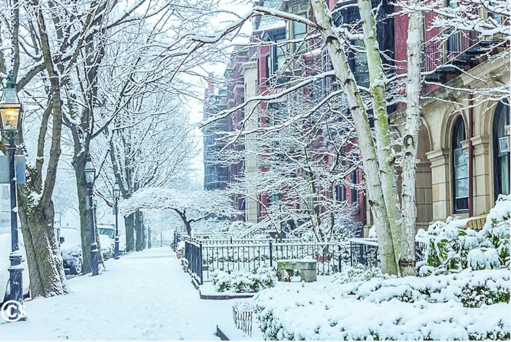 Snow-covered Marlborough St.   Not to be missed.