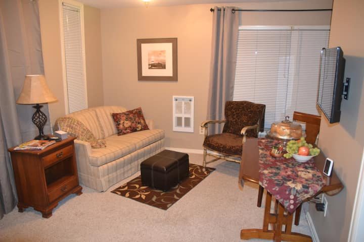 Centrally located, cozy, apartment