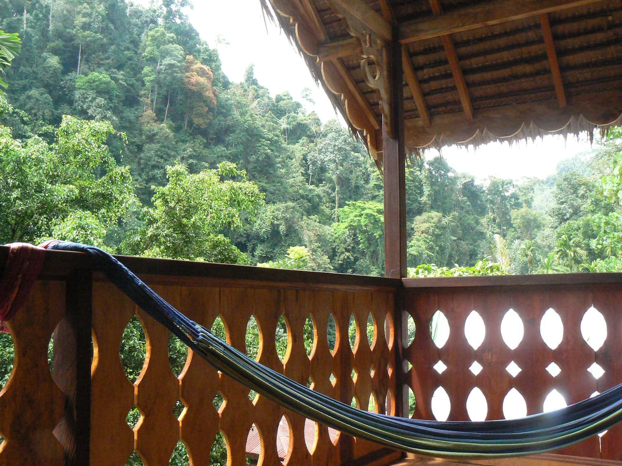 Chill out in the hammock of the treetop chalet.