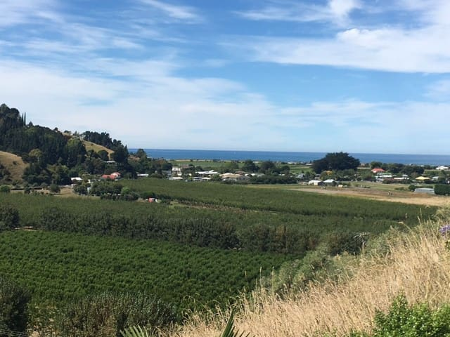 Peaceful sea and rural views - Napier - Lakás