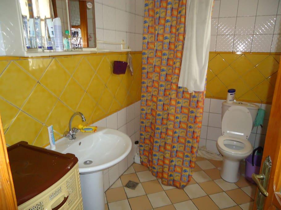 Salle d'eau, WC, Douche, lavabo.