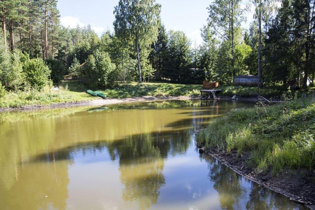 Our beautiful pond!Наш замечательный пруд!