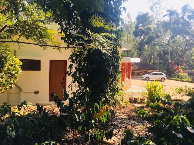 Athigiri Homestay- coffee estate
