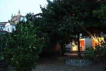 Patio. Espacio exterior con vistas al Monasterio y a la Sierra