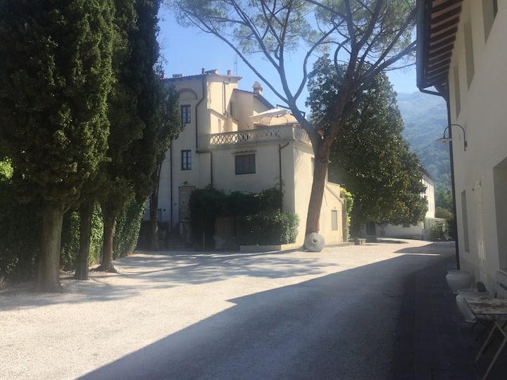 Azalea, Your Home in Versilia