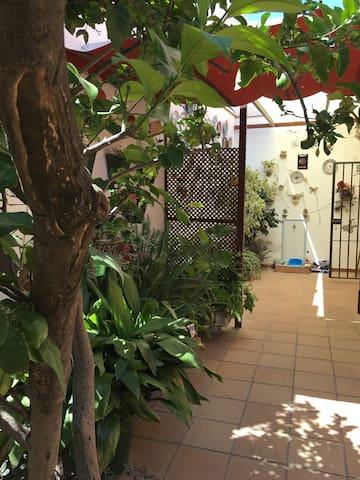 Big house with garden&parking center of Jerez
