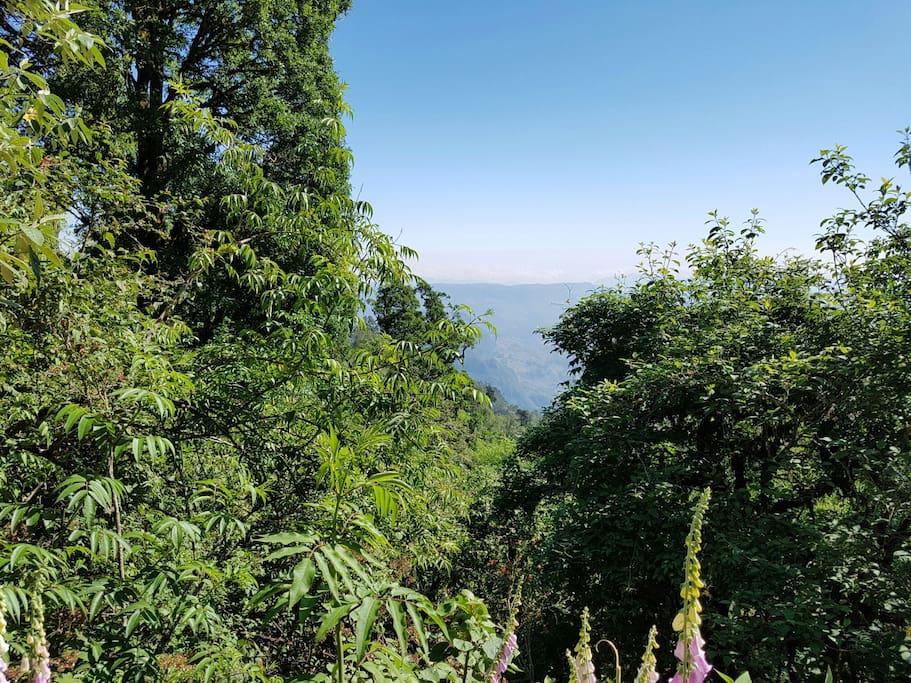 Vista panorámica de zona de camping.