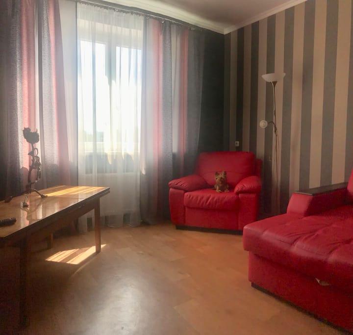 Уютная 1-комнатная квартира в центре Гродно